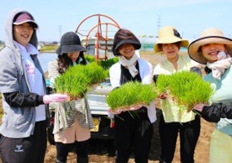 【5/4農業体験イベント】田植え体験♪インナービューティー米を作ろう!